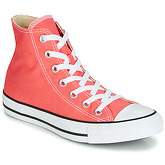 Converse  CHUCK TAYLOR ALL STAR HI  men's Shoes (High-top Trainers) in Pink