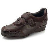 Dtorres  D'TORRES Kiew special width Diabcare  women's Loafers / Casual Shoes in Brown