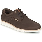 Barbour  RAE  men's Casual Shoes in Brown