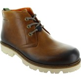 Ambitious  5882  men's Mid Boots in Brown