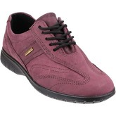 Cotswold  Simbrook  women's Shoes (Trainers) in Purple