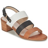 Dune  JORDANN  women's Sandals in Brown