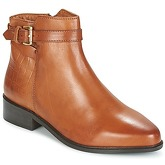 Dune  PAULO  women's Low Ankle Boots in Brown