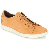 Timberland  COURT SIDE LEATHER OX  men's Shoes (Trainers) in Beige