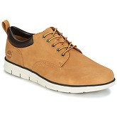 Timberland  BRADSTREET 5 EYE OX  men's Shoes (Trainers) in Beige