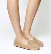UGG Ansley Slippers CHESTNUT SUEDE