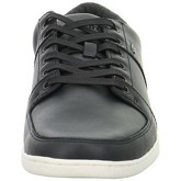 Boxfresh  Spencer Icn  men's Shoes (Trainers) in Black