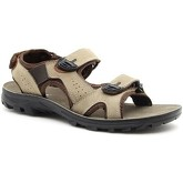 Hasby  HAS676B  men's Sandals in Brown