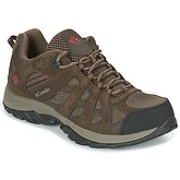 Columbia  CANYON POINT WATERPROOF  men's Walking Boots in Brown