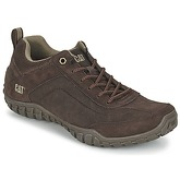 Caterpillar  ARISE  men's Shoes (Trainers) in Brown