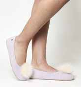UGG Andi Slipper LAVENDER FOG EXCLUSIVE