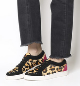 Office Favourable Studded Lace Up LEOPARD  PINK AND BLACK