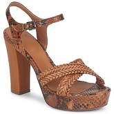 Now  KENIA  women's Sandals in Brown