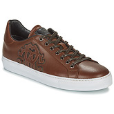 Roberto Cavalli  8317  men's Shoes (Trainers) in Brown