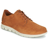 Timberland  BRADSTREET OXFORD  men's Shoes (Trainers) in Brown